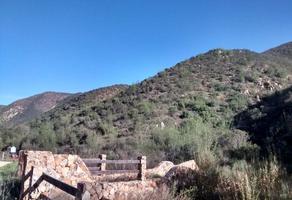 Foto de terreno habitacional en venta en los encinares , san antonio de las minas, ensenada, baja california, 11933718 No. 01
