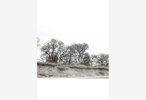 Foto de terreno habitacional en venta en  , los encinos, puebla, puebla, 0 No. 01