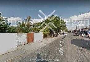 Foto de terreno comercial en renta en  , los faisanes, guadalupe, nuevo león, 0 No. 01