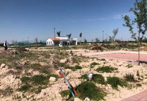 Foto de terreno habitacional en venta en  , los gavilanes, león, guanajuato, 11730392 No. 01
