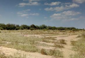 Foto de terreno habitacional en venta en los gómez , los gómez, soledad de graciano sánchez, san luis potosí, 10417648 No. 01