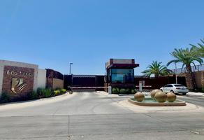 Foto de terreno habitacional en venta en  , los lagos, hermosillo, sonora, 0 No. 01