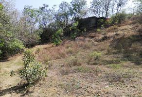 Foto de terreno habitacional en venta en los molinos 0, san felipe del agua 1, oaxaca de juárez, oaxaca, 8734299 No. 01