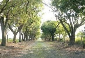 Foto de terreno habitacional en venta en  , los molinos, zapopan, jalisco, 6417375 No. 01