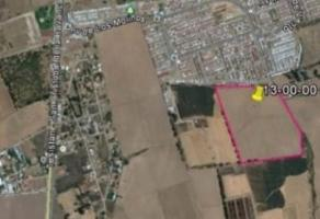 Foto de terreno comercial en venta en  , los molinos, zapopan, jalisco, 0 No. 02