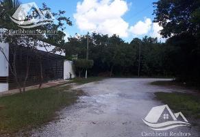 Foto de terreno habitacional en venta en  , los naranjos, benito juárez, quintana roo, 0 No. 01