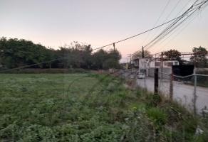 Foto de terreno comercial en renta en  , los naranjos, juárez, nuevo león, 9001691 No. 01