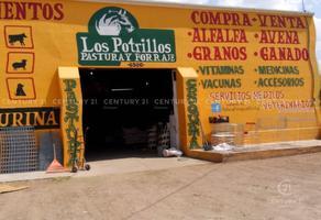 Foto de local en venta en  , los nogales, chihuahua, chihuahua, 16084073 No. 01