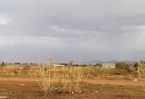 Foto de terreno comercial en venta en  , los nogales, chihuahua, chihuahua, 18329781 No. 01