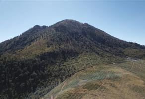 Foto de terreno habitacional en venta en  , los nogales, pátzcuaro, michoacán de ocampo, 20187252 No. 01