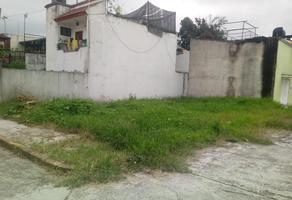 Foto de terreno habitacional en venta en  , los olivos, coatepec, veracruz de ignacio de la llave, 0 No. 01