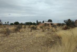 Foto de terreno habitacional en venta en  , los olivos, jesús maría, aguascalientes, 11890659 No. 01
