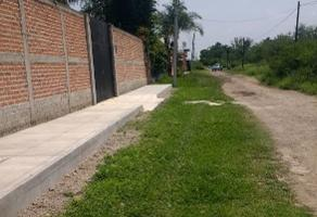 Foto de terreno habitacional en venta en los pinos , colinas de cajititl?n, tlajomulco de z??iga, jalisco, 3664360 No. 01