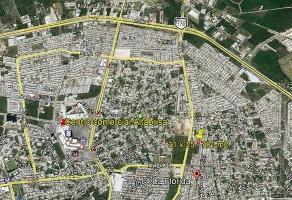 Foto de casa en venta en  , los pinos, mérida, yucatán, 11544989 No. 02