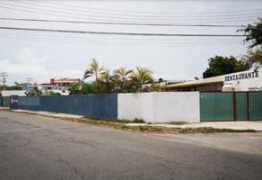 Foto de terreno comercial en venta en  , los pinos, mérida, yucatán, 18582405 No. 01