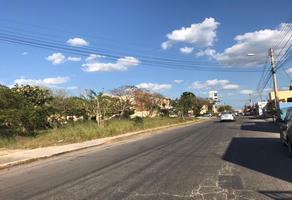 Foto de terreno habitacional en venta en  , los pinos, mérida, yucatán, 0 No. 01
