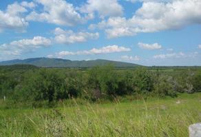 Foto de terreno habitacional en venta en  , los ramones, los ramones, nuevo león, 17844688 No. 01