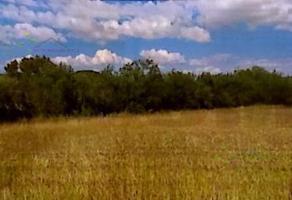 Foto de terreno habitacional en venta en  , los ramones, los ramones, nuevo león, 19026189 No. 01