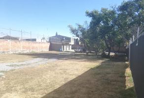 Foto de terreno comercial en renta en los robles , los robles, zapopan, jalisco, 6893461 No. 01