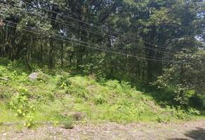 Foto de terreno industrial en venta en  , los robles, tlalnepantla, morelos, 0 No. 01
