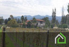 Foto de terreno habitacional en venta en los rodríguez , los rodriguez, san miguel de allende, guanajuato, 0 No. 01