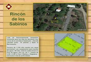 Foto de terreno habitacional en venta en los sabinos 000, los palmitos, cadereyta jiménez, nuevo león, 0 No. 01
