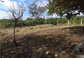 Foto de terreno habitacional en venta en  , los sabinos, tuxtla gutiérrez, chiapas, 18686198 No. 01