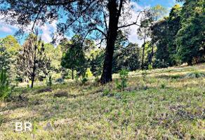 Foto de terreno habitacional en venta en  , los saúcos, valle de bravo, méxico, 0 No. 01