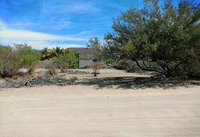 Foto de terreno habitacional en venta en  , los tabachines, la paz, baja california sur, 0 No. 01