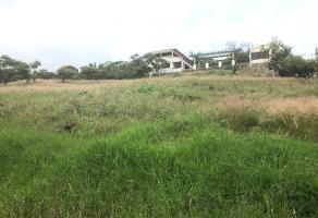 Foto de terreno habitacional en venta en los tepames , pedregal de san miguel, tlajomulco de zúñiga, jalisco, 5979049 No. 01
