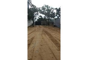 Foto de terreno habitacional en renta en  , los tepetates, acapulco de juárez, guerrero, 0 No. 01