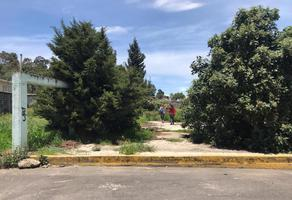 Foto de terreno habitacional en venta en los tordos lote 1 ylote 3, tlalmanalco, tlalmanalco, méxico, 12305825 No. 01