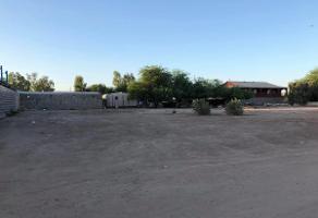 Foto de terreno habitacional en venta en  , los arcos, mexicali, baja california, 15642029 No. 01