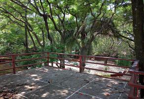 Foto de oficina en venta en  , los volcanes, cuernavaca, morelos, 0 No. 01