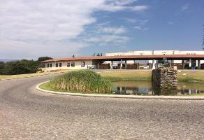 Foto de terreno habitacional en venta en lote 10 manzana 40 calle pinos , rancho san juan, atizapán de zaragoza, méxico, 13011544 No. 01