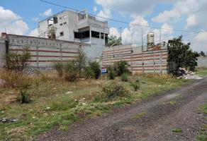 Foto de terreno habitacional en venta en lote 10 , torija, cuautinchán, puebla, 14956083 No. 01