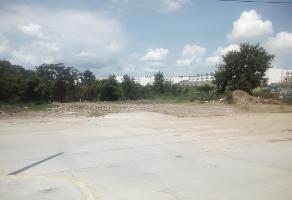 Foto de terreno habitacional en venta en lote 16 , alejandro briones, altamira, tamaulipas, 12155233 No. 01