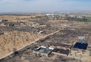 Foto de terreno habitacional en venta en lote 36 sección calle , ciudad de los olivos, irapuato, guanajuato, 9462140 No. 01