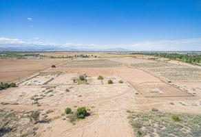 Foto de terreno habitacional en venta en lote 5 manzana 3 lote 5 manzana 3 fraccionamiento granjas campestre mexicali , campestre, mexicali, baja california, 20095373 No. 01