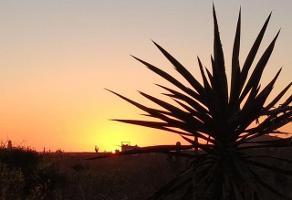 Foto de terreno habitacional en venta en lote 5 palmeiras residencial 0, el tezal, los cabos, baja california sur, 4649141 No. 01