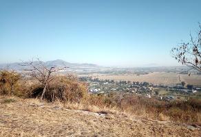 Foto de terreno habitacional en venta en lote 16 manzana 3 s/n , pedregal de san miguel, tlajomulco de zúñiga, jalisco, 6414861 No. 01