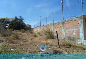 Foto de terreno habitacional en venta en lote 6 , san lorenzo itzicuaro, morelia, michoacán de ocampo, 0 No. 01