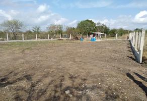 Foto de terreno comercial en renta en lote 6 y 7 , álamo, altamira, tamaulipas, 0 No. 01