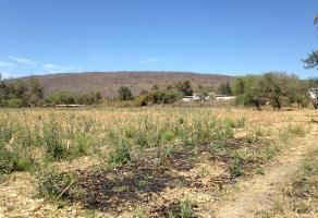 Foto de terreno habitacional en venta en el tepehuaje lote 7, santa rosa, ixtlahuacán de los membrillos, jalisco, 3080372 No. 01