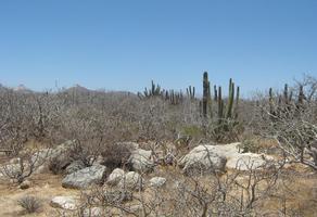 Foto de terreno habitacional en venta en lote agustin 14 manz. xiv lote - 14 , la playita, los cabos, baja california sur, 0 No. 01