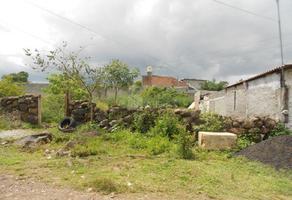 Foto de terreno habitacional en venta en lote , san lorenzo itzicuaro, morelia, michoacán de ocampo, 0 No. 01