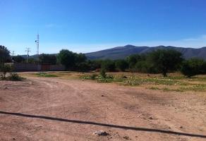 Foto de terreno habitacional en venta en lucero s/n cerritos , corral de piedras de arriba, san miguel de allende, guanajuato, 14189493 No. 01