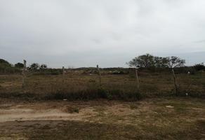 Foto de terreno habitacional en venta en  , luis donaldo colosio, altamira, tamaulipas, 0 No. 01