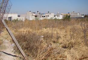 Foto de terreno comercial en venta en  , pozo de la pila, ecatepec de morelos, méxico, 7148749 No. 01