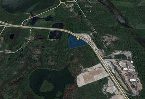Foto de terreno industrial en renta en luis donaldo colosio , puerto industrial de altamira, altamira, tamaulipas, 5770001 No. 01